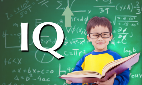 Activities and Brain Exercises that will Increase your Child's IQ