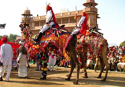 Bikaner Camel Festival: An Event Dedicated To the Ship of the Desert